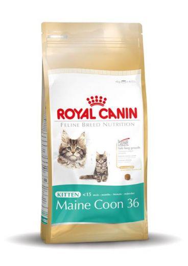 ROYAL CANIN MAINE COON KITTEN 2 KG